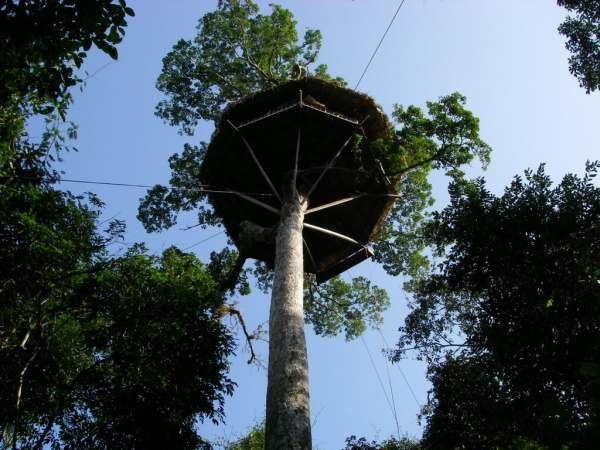 Découvrez Bokeo et sa réserve naturelle au Laos